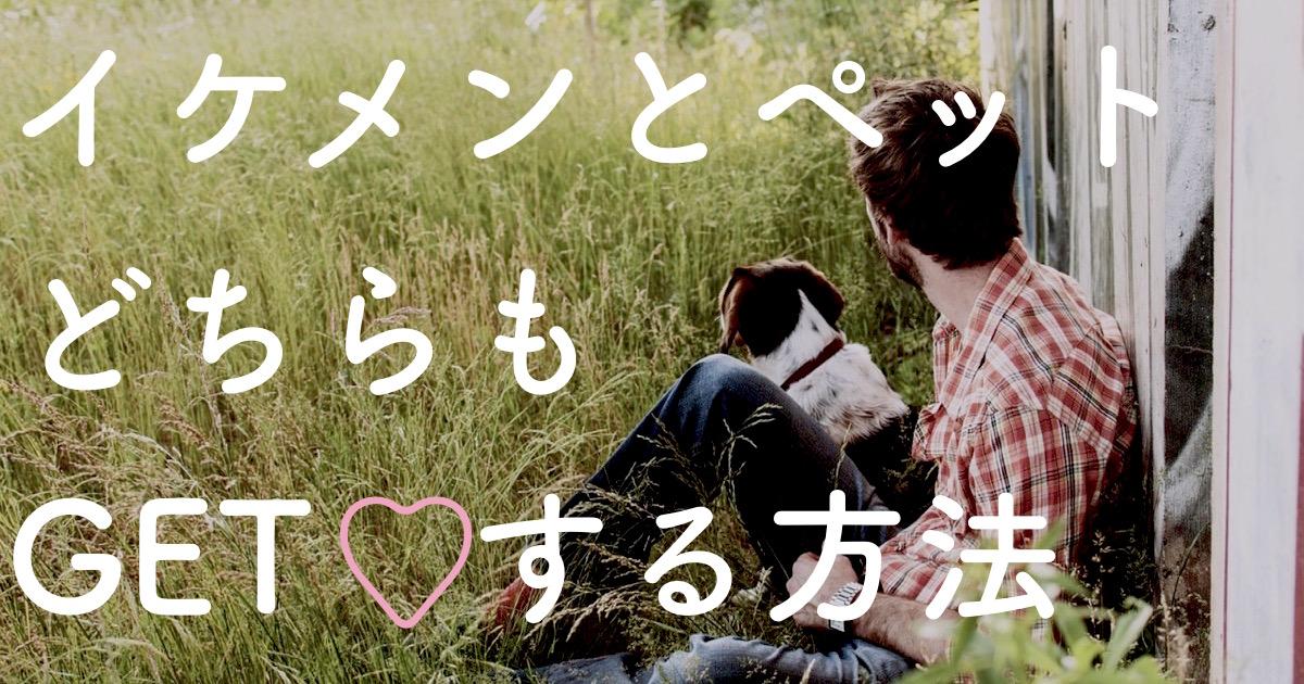 man-and-dog-1149400_1280
